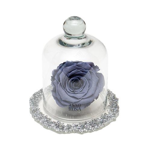 DIAMANTE BELLE SINGLE INFINITY ROSE - GREY