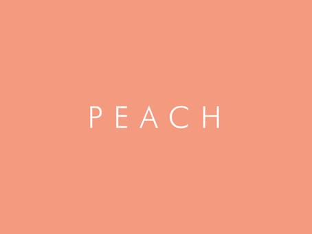 Peach Preserved Roses | Anno Rosa