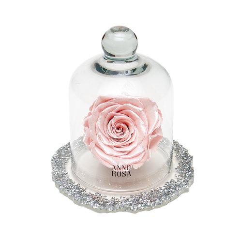 DIAMANTE BELLE SINGLE INFINITY ROSE - METALLIC PINK