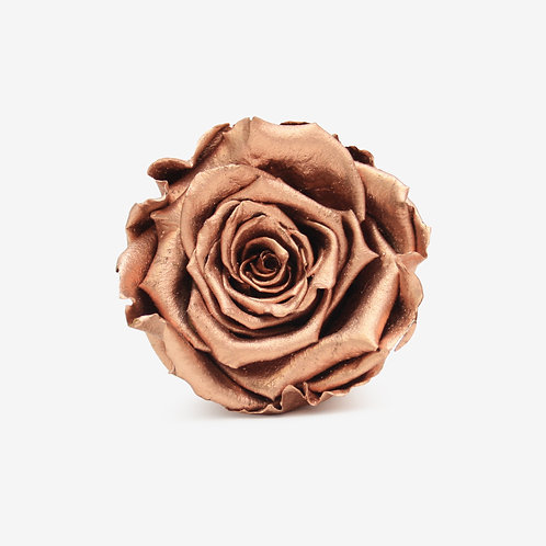 Rose Gold Preserved Infinity Rose That Lasts A Year