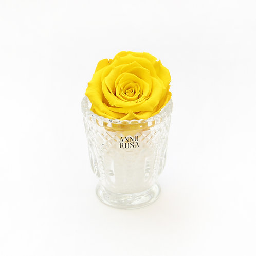 Yellow Eternity Rose That Lasts a Year