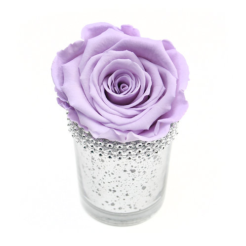 Lilac Infinity Rose that lasts a year