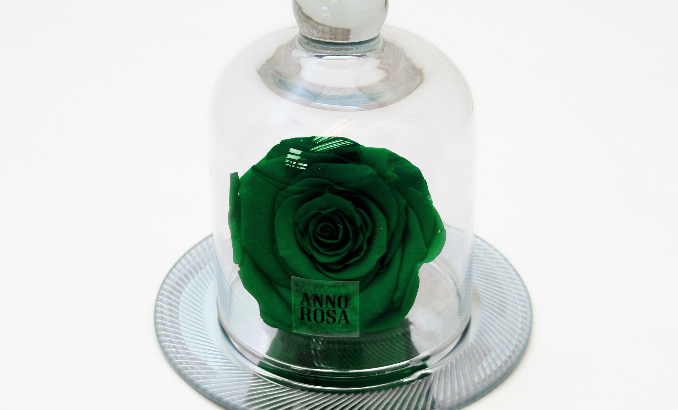 Real Green Rose