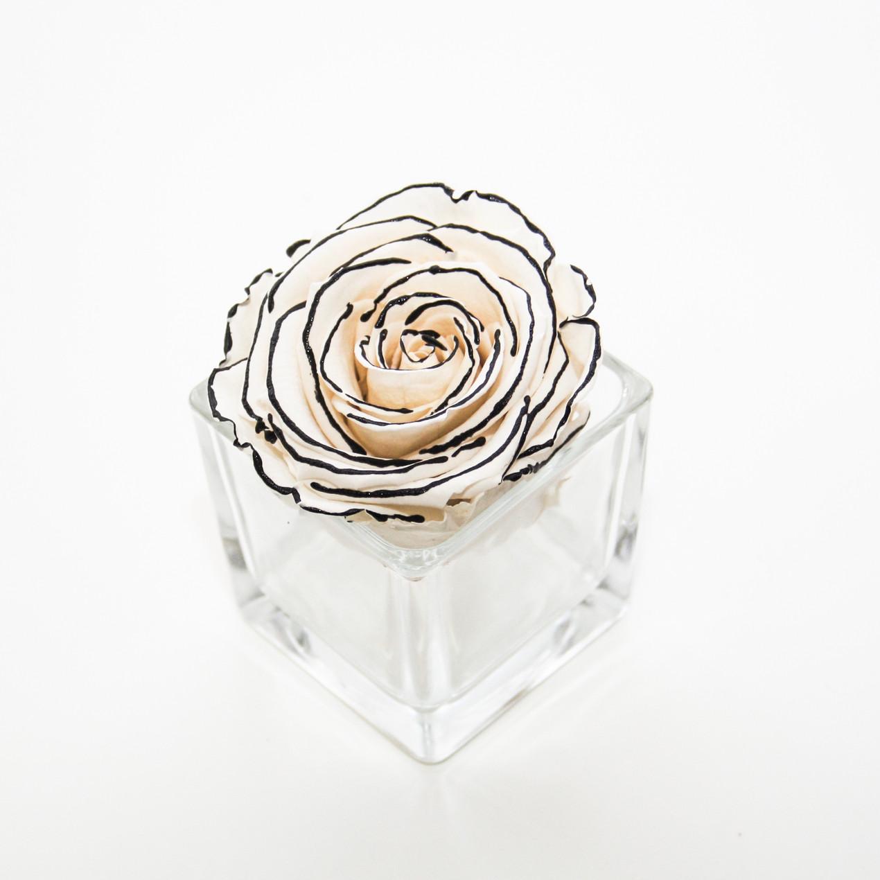home interior home design preserved roses chanel rose year long roses forever rose
