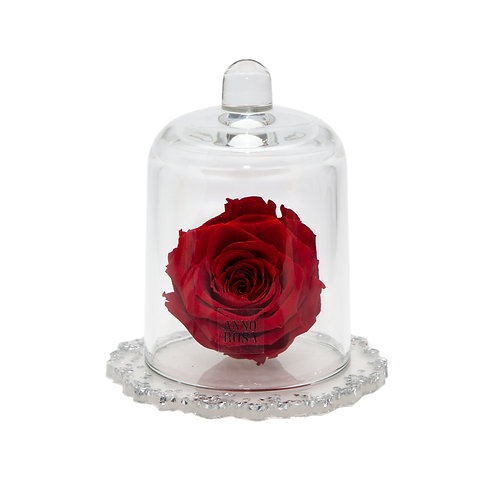 DELUXE RED DIAMANTE RESIN BELLE SINGLE INFINITY ROSE