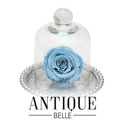BELLE ANTIQUE BUTTONS.jpg