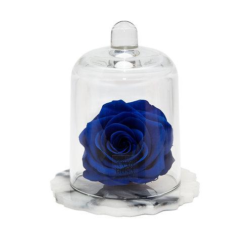 DELUXE SAPPHIRE MARBLE RESIN BELLE SINGLE INFINITY ROSE