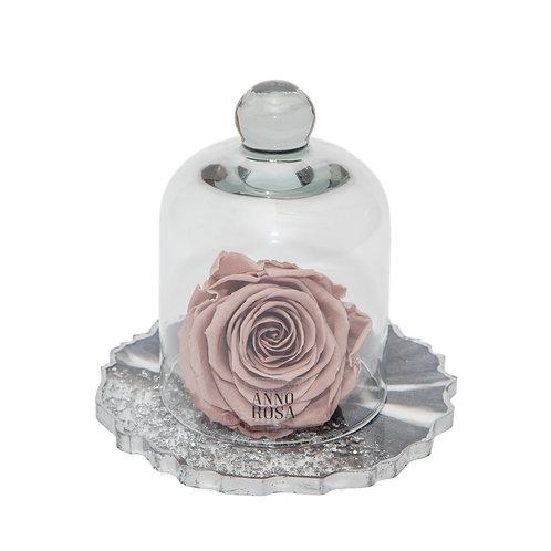 RESIN BELLE SINGLE INFINITY ROSE - MINK
