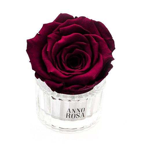 ELEGANT INFINITY ROSE - WINE