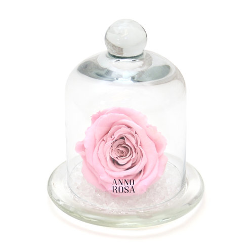 """BABY GIRL"" BIRTH COLLECTION - PINK BELLE ROSE"
