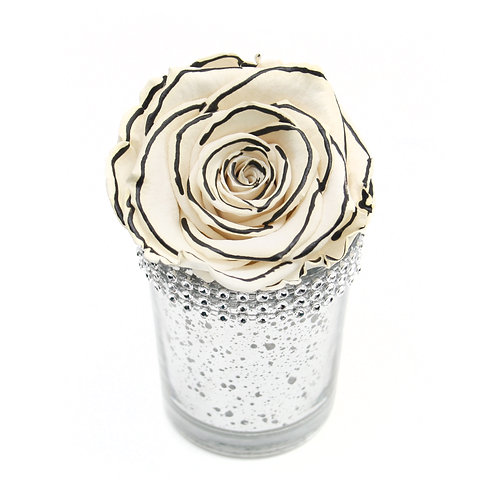 Zebra Infinity Rose that lasts a year