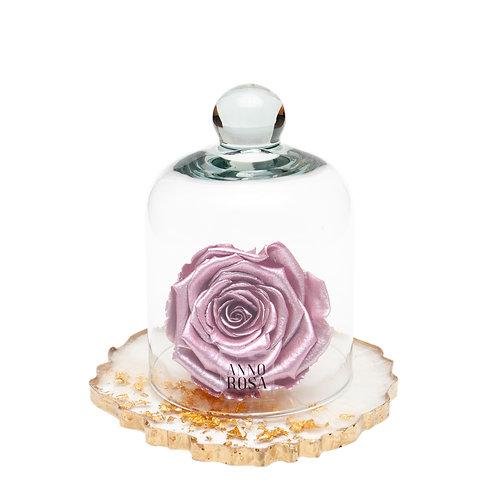 RESIN BELLE SINGLE INFINITY ROSE - METALLIC PINK