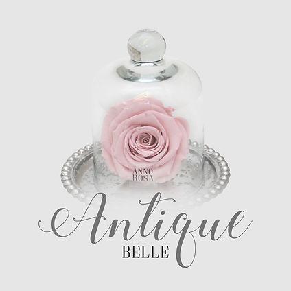 antique belle category .jpg