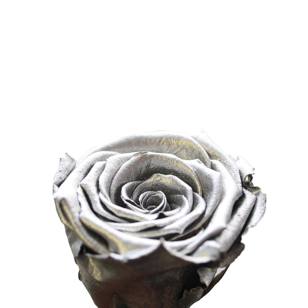 preserved roses forever roses interior design home decor home interior bedroom decor silver roses metallic roses rose gold roses year long roses