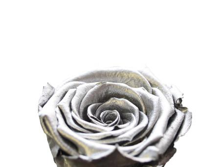 Silver Metallic Roses | Anno Rosa
