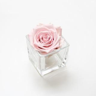 preserved roses, infinity roses, forever roses, roses that last a year, year long roses, roses that dont die, forever roses, pink rose, pink roses for decor, decor, interior, pink interior, forever rose in pink, pink roses, gift ideas, girls gift ideas, bedroom inspo, glass jar, glass vase, pink rose