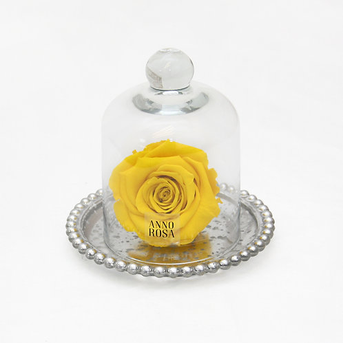 ANTIQUE BELLE SINGLE INFINITY ROSE - YELLOW