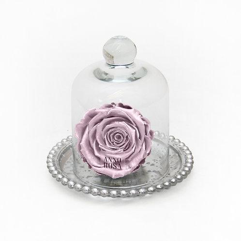 ANTIQUE BELLE SINGLE INFINITY ROSE - METALLIC PINK