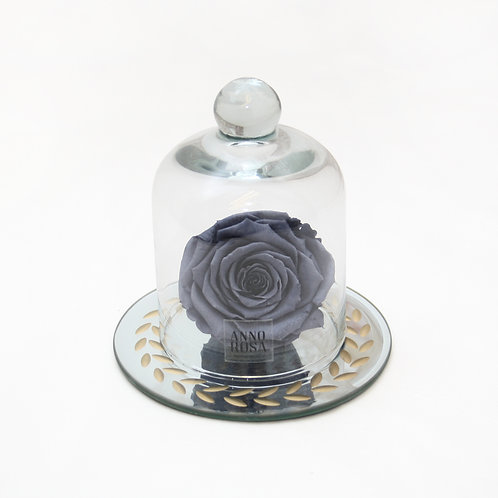 Grey Eternal Preserved Rose that lasts a year