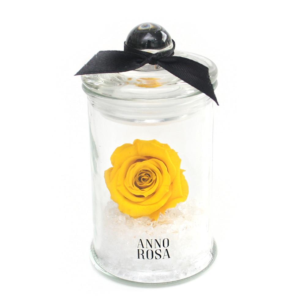 Mini Rose Jar Collection