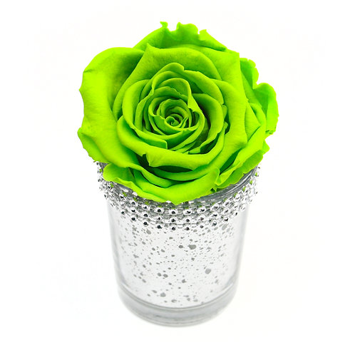 Bright Green Infinity Rose that lasts a year