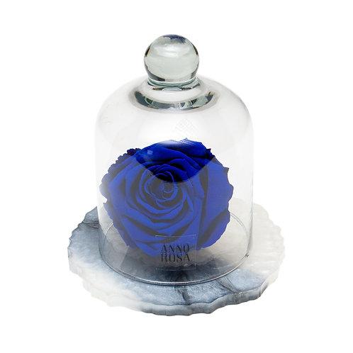 MARBLE BELLE SINGLE INFINITY ROSE - SAPPHIRE