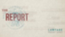 the Report UPDATED Banner.png