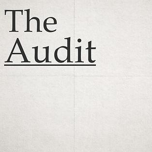 the Audit Logo spec.jpg