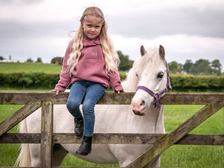 Equestrian Sessions - what to expect?