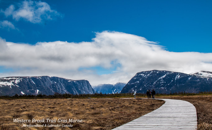 Trail To Gros Morne