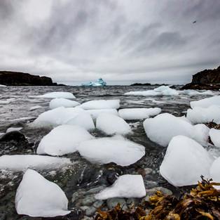 Iceberg shore