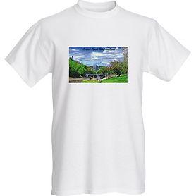 cbtshirt.jpg