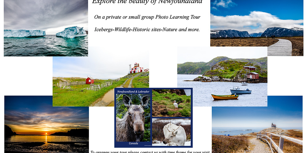 2 week Private photo tour of Newfoundland