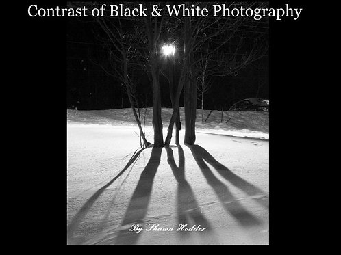 Contrast of Black & White Photography Book