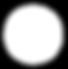 rsz_white_logo_-_no_background.png