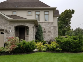 4 Reasons to Hire a Landscape Designer - Sunready Landscaping