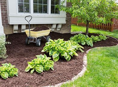 dirt-cheap-enhanced-brown-bark-mulch-sca