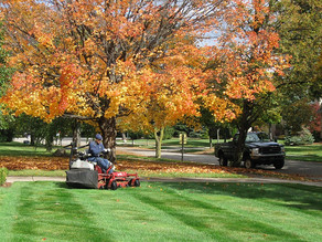 """Prep your lawn for winter and """"Fall Into Savings"""" with Sunready Landscaping"""