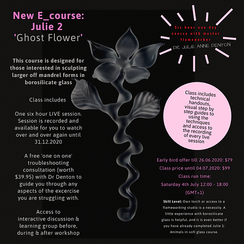 Ghost Flower - Entire E-course with private consultations