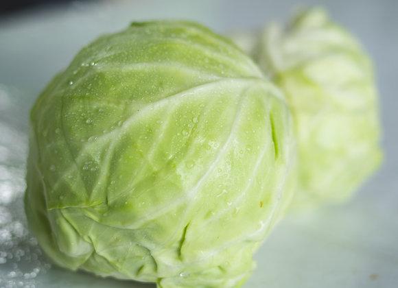 Cabbage - 1 head