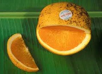 Kau Oranges
