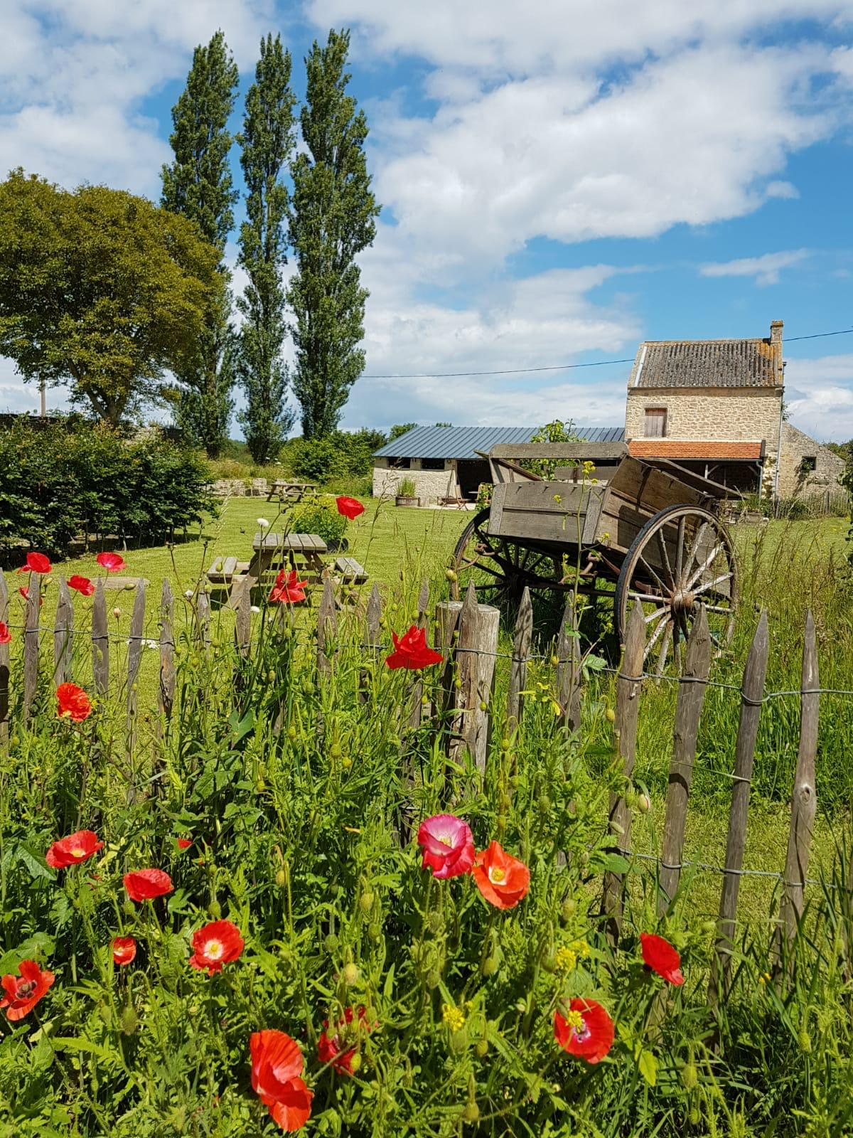 ferme-hay-day-buitenruimte