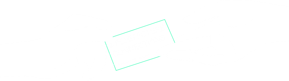 Virtual Networking Event Architecture Connections