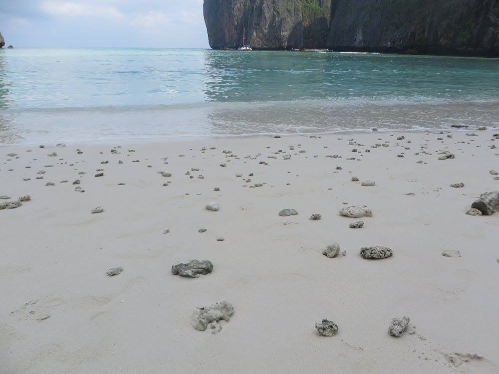 Maya Bay Phi Phi Excursions
