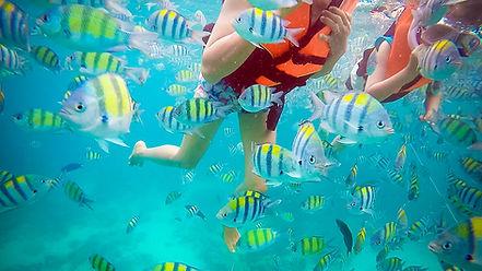Raya Adasi snorkel