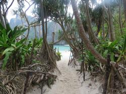 Maya Bay best phuket tours