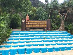 Maya Bay Tours in Phuket
