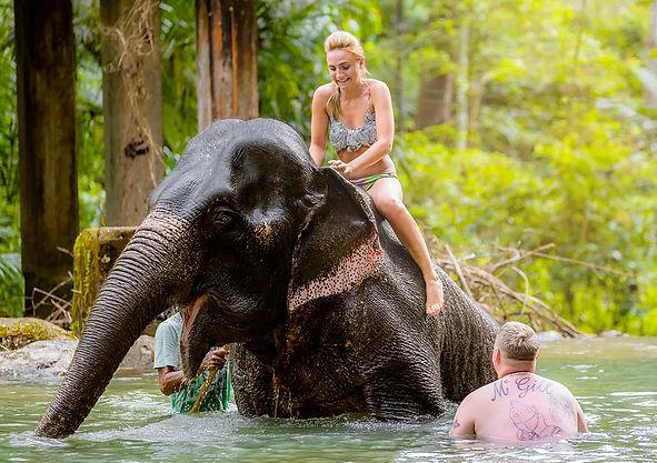 Phuket en guzel fil safari, fil binme, rafting, macera, doga turu