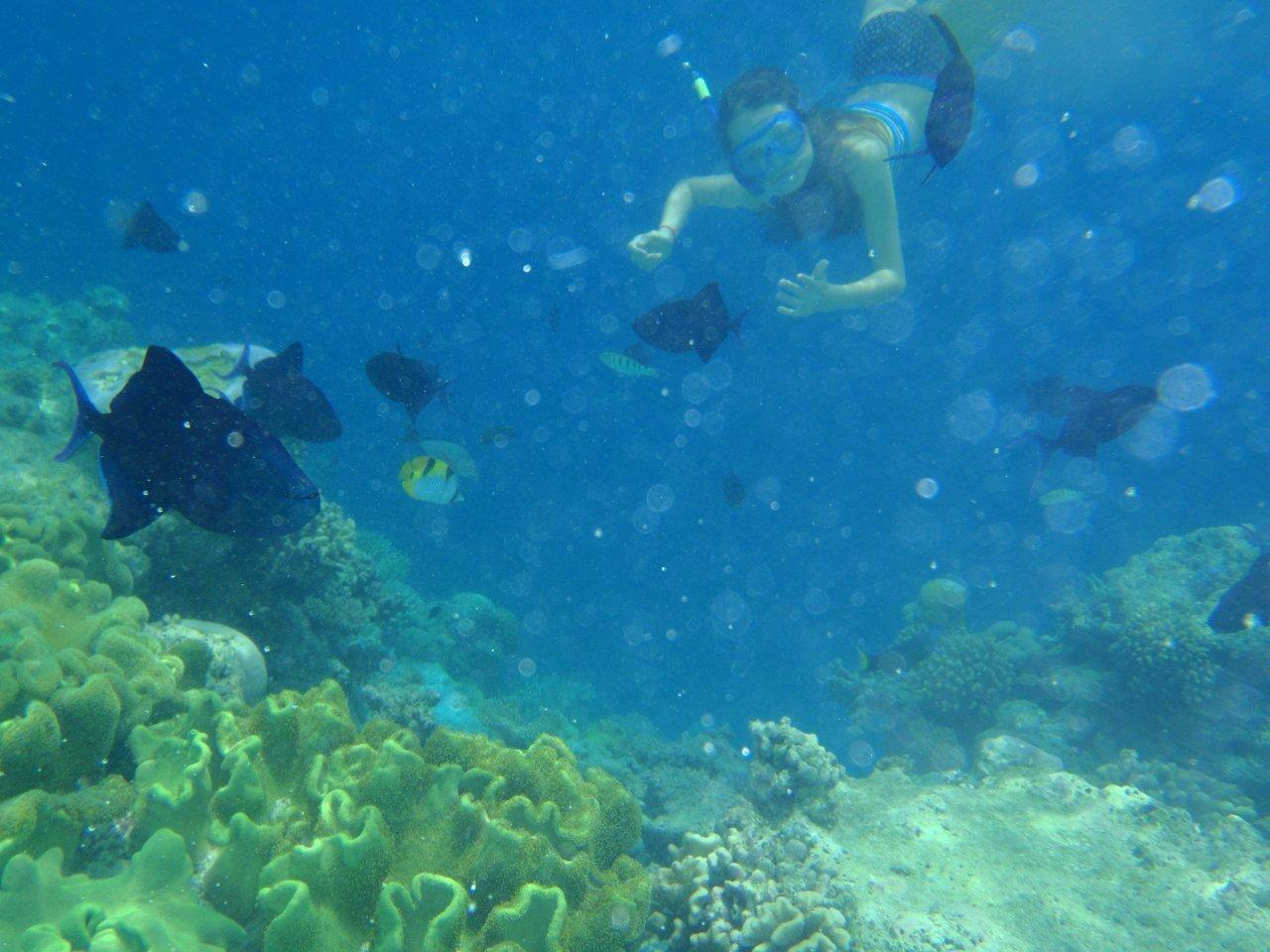 snorkeln in Phuket tours
