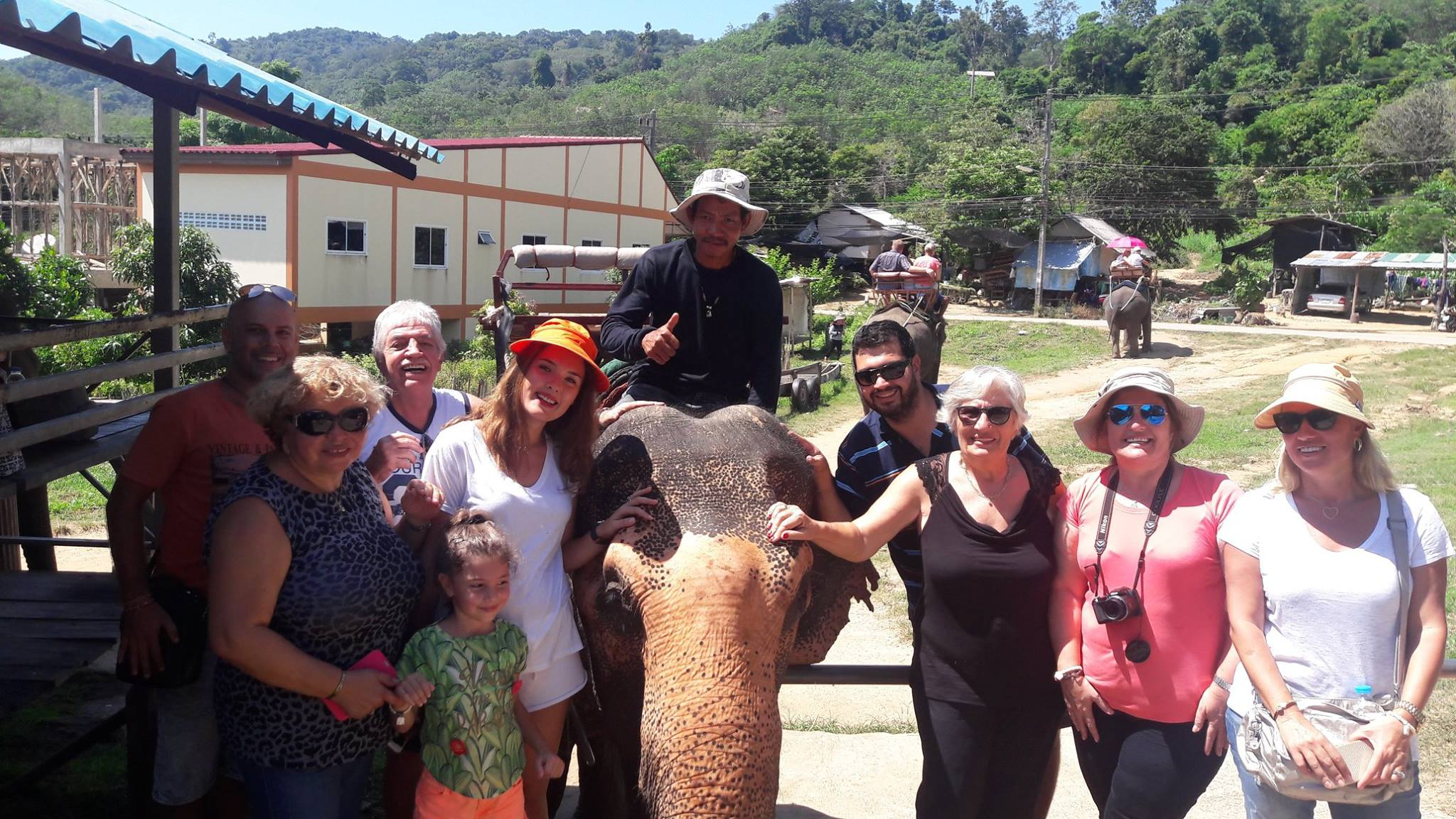 Elephant Safari Tour Phuket